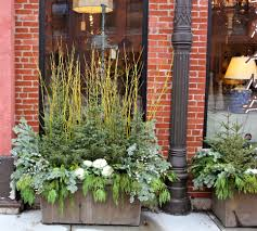greens and kale winter container idea from 5th and state blog