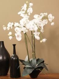 silk orchids linen white silk orchid design o106 76 o106 76 129 95