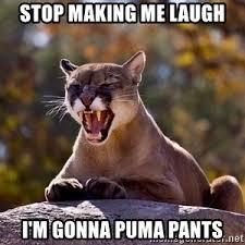 Puma Pants Meme - puma pants meme meme generator