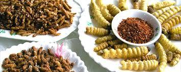 insectes dans la cuisine où manger des insectes à