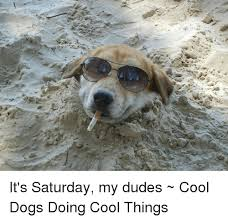 It S Saturday Meme - 25 best memes about its saturday my dudes its saturday my
