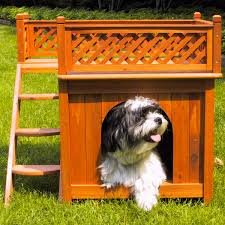 Doghouse For Large Dogs Room With A View Pet House Dudeiwantthat Com
