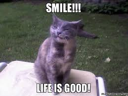 Life Is Great Meme - life is great meme 28 images my life is good really good nacho