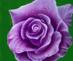 Meaning Of Opulence Meaning Of Roses By Color