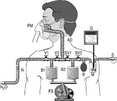 Types Of Ventilators Dynamic Dead Space In Face Masks Used With Noninvasive Ventilators