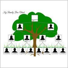 family tree exle familytreeexle jpg familytreeexle jpg