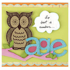 put focus on a paper accent design by candice carpenter an owl
