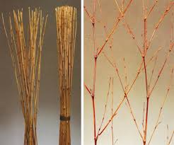 Decorative Sticks For Floor Vases Stunning Tall Branches For Decorating Images Home Design Ideas