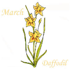 Flowers Of The Month 019 3 March Daffodils Flower Of The Month Cling Set