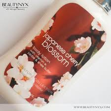 bath body works japanese cherry blossom body lotion