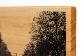 wood print wood prints transferring a photo onto wood martin pot