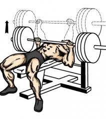 What Do Bench Presses Work Out Bench Press Improvements You Can Make The Pulse