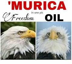 Murica Memes - the best murica memes memedroid