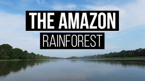 peru travel vlog the amazon rainforest youtube
