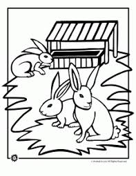 rabbits coloring pages bunny coloring pages woo jr kids activities