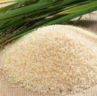 seeraga samba rice in usa samba rice in bengaluru karnataka manufacturers suppliers of