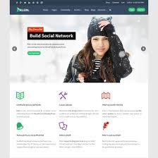 10 best buddypress themes for community sites plus bbpress