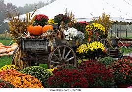 autumn decorations fall decorations stock photos fall decorations stock images alamy