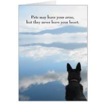 sympathy for loss of dog dog sympathy cards poems quotes