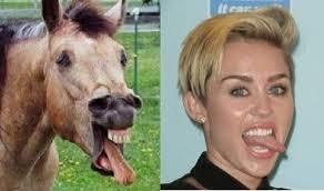 Miley Cyrus Turkey Meme - things that look like miley cyrus