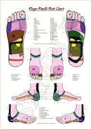 Foot Reflexology Map Shop
