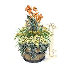 Tropical Potted Plants Outdoor - container garden plans