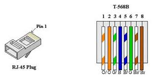 cat 5 house wiring diagram cat free diagrams readingrat net at 3