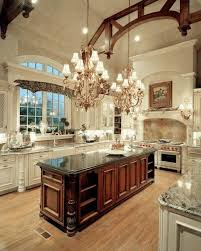 Fancy Kitchen Designs 11 Best Fancy Kitchens Images On Pinterest Dream Kitchens