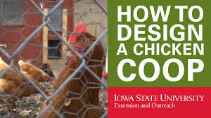 How To Design Your Own House Plans Chicken Coop Designs Youtube 13 Coop For 20 Chickens Build Your