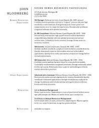 Plain Resume Template Plain Divider Cv