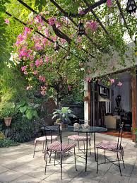 Plants For Pergola by How To Plan A Pergola Hgtv