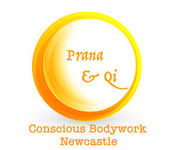 prana u0026 qi mind body integration