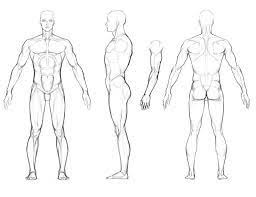 image result for orthographic character sheet model for
