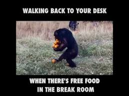 Free Food Meme - when there s free food in the break room youtube
