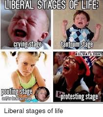 Liberal Girl Meme - liberal stages of life crving stage tantrumstage pouting stage andor