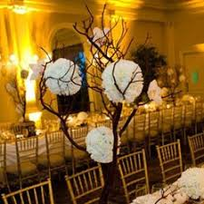Black And White Ball Decoration Ideas The 25 Best Manzanita Tree Ideas On Pinterest Manzanita Tree
