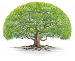 big tree stock vector 491886554 istock