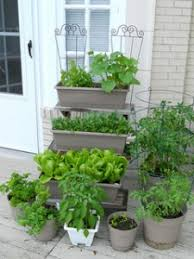 container vegetable gardeningvegetable gardening tips