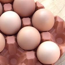 ceramic egg tray 12 terracotta egg holder 12 eggs terracotta uk the