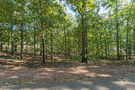 lot 46 lakeview dr eclectic al 36027 us lake martin real estate