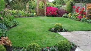 Backyard Ground Cover Ideas by Good Backyard Landscaping Ideas Wonderful Suitable Trees How To