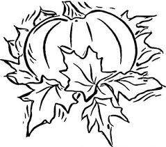 163 coloring images pumpkin coloring