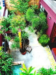 Gardening Ideas Pinterest Best Narrow Garden Ideas On Pinterest Side Small Gardens And Yards