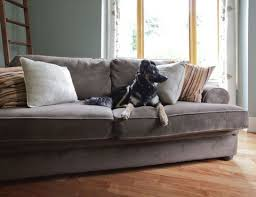 couch vs sofa couch definition and sofa definition