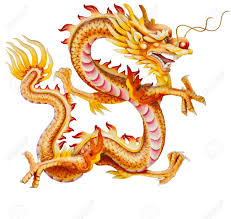 golden dragon isolated on white background stock photo picture