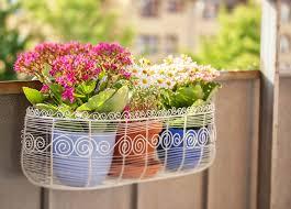 balkon blumen schöne ideen für die bepflanzung des balkons