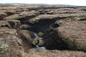 old european culture peat
