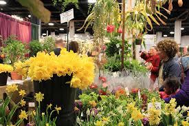 boston flowers the boston flower garden show showcases new s