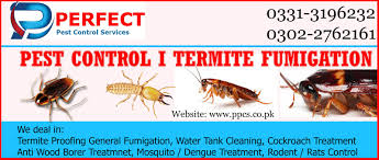 Bed Bug Cleaning Services Perfect Pest Control Services Termite Proofing Treatment