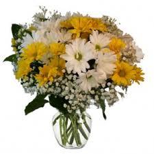 flower shops in colorado springs colorado springs florist my floral shop colorado springs